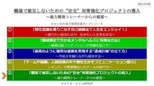 Anzentaisaku02