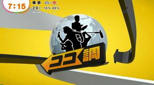 Fujitvmezamasi2013061721