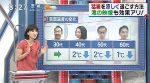 Tokudane2013071214